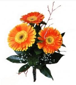 Greitas gėliųš pristatymas užsakius jas internetu